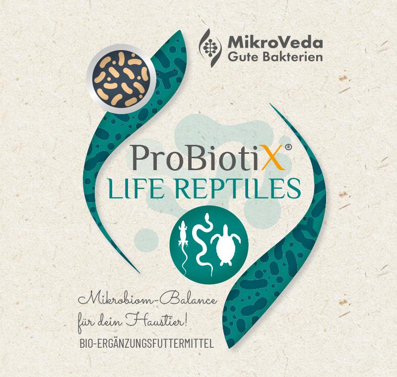ProbiotiX LIFE REPTILES Bio Ergänzungsfutter 250 ml PET Flasche mit Tropfverschluss