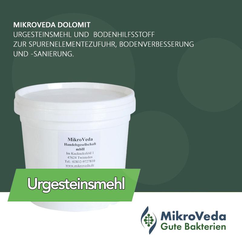 MikroVeda DOLOMIT Urgesteinsmehl im 25 kg Sack